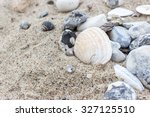 Shells And Stones On The Sandy...