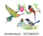 watercolor colorful birds and... | Shutterstock . vector #327180224