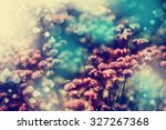 beautiful flowers with the... | Shutterstock . vector #327267368