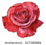 Beautiful Red Rose Watercolor...