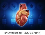 human heart   anatomy of human...   Shutterstock . vector #327367844