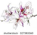 magnolia tropical flower in... | Shutterstock . vector #327383360