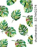 tropical split leaves  plant... | Shutterstock . vector #327442274