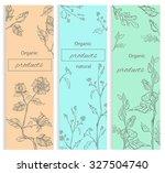 floral  flowering decorative... | Shutterstock .eps vector #327504740