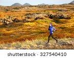 Woman Trail Runner Running In...