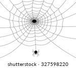 Isolated Spider Web With Spide...
