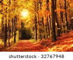 Sunset In Autumn Forest   A...