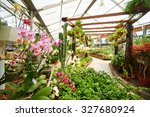 many green plants and orchids... | Shutterstock . vector #327680924