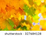 Background With Yellow  Red An...