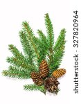 green branches with cones on a... | Shutterstock . vector #327820964