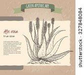 aloe vera flower and plant... | Shutterstock .eps vector #327848084