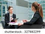 young business woman job...   Shutterstock . vector #327882299