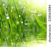 fresh green grass with dew drop ... | Shutterstock . vector #328065884