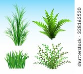 Wild Plants Vector Illustratio...