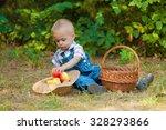 little boy with a basket of... | Shutterstock . vector #328293866