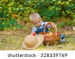 little boy with a basket of... | Shutterstock . vector #328339769