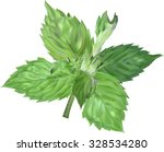 illustration with mint leaf... | Shutterstock .eps vector #328534280