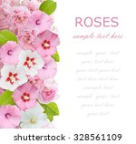 white and pink flowers... | Shutterstock . vector #328561109