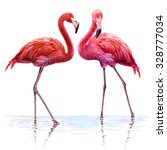 colorful pink flamingo.... | Shutterstock . vector #328777034