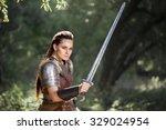 beautiful female warrior in...   Shutterstock . vector #329024954