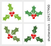 holly berry collection. vector... | Shutterstock .eps vector #329177900
