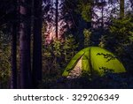camping in a forest. late... | Shutterstock . vector #329206349