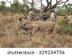 magaliesberg  south africa  ... | Shutterstock . vector #329234756