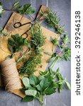 Harvesting Herbs For Winter ...