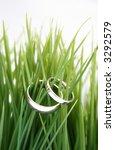 wedding bands   in green grass | Shutterstock . vector #3292579