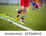 ladder drills exercises for... | Shutterstock . vector #329268410