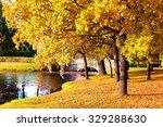 Beautiful Autumn Forest In Par...