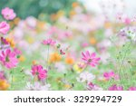 colorful cosmos | Shutterstock . vector #329294729