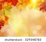 autumnal fall in the forest ... | Shutterstock . vector #329348783