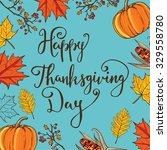 hand drawn autumn thanksgiving...   Shutterstock .eps vector #329558780