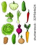 fresh cabbage  cucumber  carrot ... | Shutterstock .eps vector #329564624