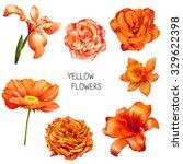 set of beautiful yellow  orange ... | Shutterstock . vector #329622398