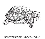 turtle. hand drawn vector... | Shutterstock .eps vector #329662334