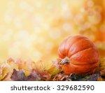 Pumpkin On Autumn Leaves. Boke...