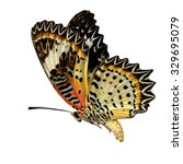 beautiful butterfly  malayan... | Shutterstock . vector #329695079