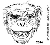 portraits of monkey  new year... | Shutterstock .eps vector #329781914