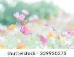 colorful cosmos | Shutterstock . vector #329930273