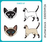 siamese cat vector set. face...   Shutterstock .eps vector #330054926