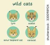 wild cats set  lynx  ocelot ... | Shutterstock .eps vector #330098924