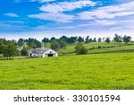 evening on countryside. green...   Shutterstock . vector #330101594