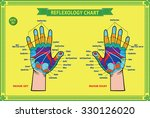 hand reflexology chart with... | Shutterstock .eps vector #330126020