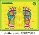 foot  reflexology chart with... | Shutterstock .eps vector #330126023