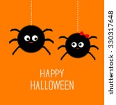 two hanging spider insect... | Shutterstock . vector #330317648