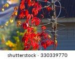 internet antenna. wireless... | Shutterstock . vector #330339770