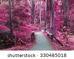 Road Way To Purple Forest  ...