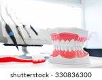 Clean Teeth Denture  Dental Jaw ...